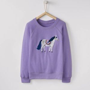 Hanna Andersson Purple Fairytale Sweatshirt